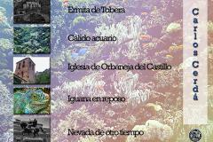 Carlos_2-3