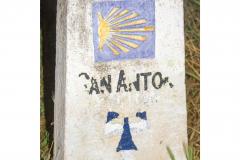 30x40_camino-de-santiago_carlos