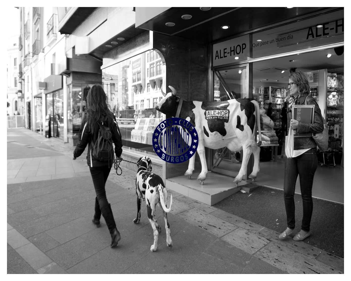 Ana2-Foto-Callejera-40x50-Valencia