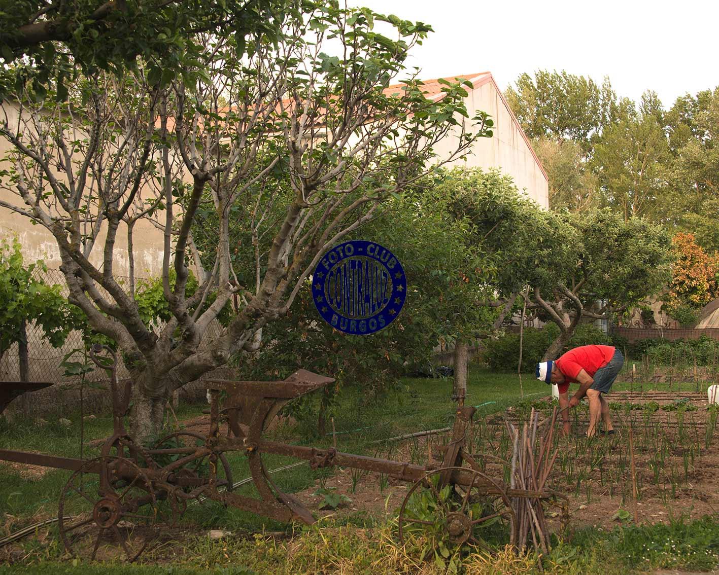 Coro2-Foto-Callejera-40x50-Valencia