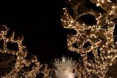 Navidad-2019-6