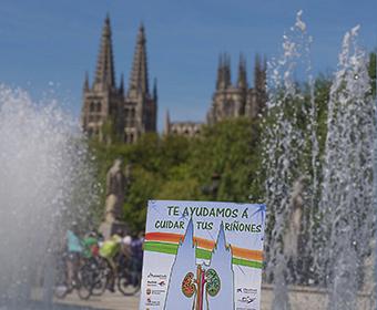 Fotografías Solidarias ALCER Burgos